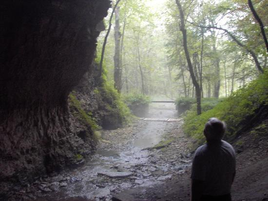 Sampson Springs Campground : Inside cavern looking out