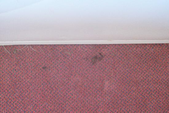 The Grand Beach Inn: stains in carpet by bed