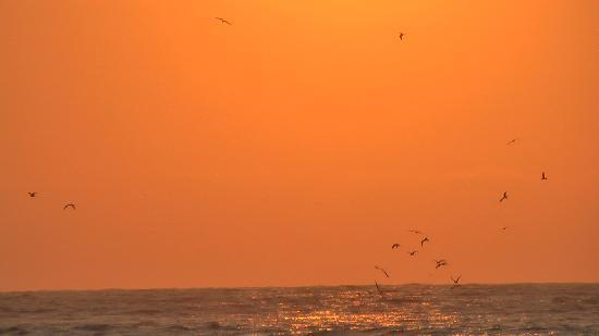 Tumbes, Peru: sunset-impression