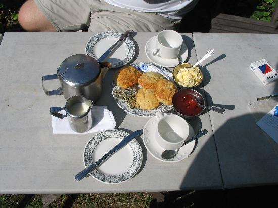 Le Vieux Clos: The cream tea - must try!