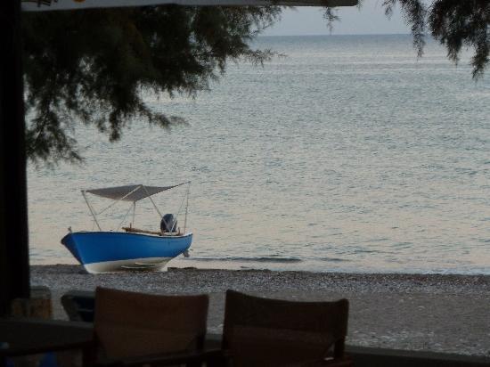El Vita Apartments: beach from taverna