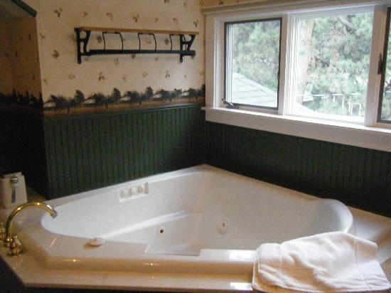Anniversary Inn Bed and Breakfast: Jacuzzi tub