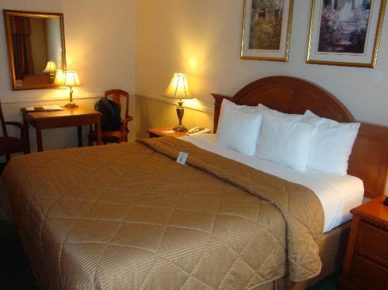 Comfort Inn Ventura Beach: Bedroom