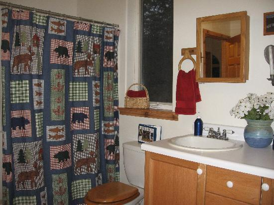Havenwood Guest House: Bathroom with tub/shower andwasher/dryer