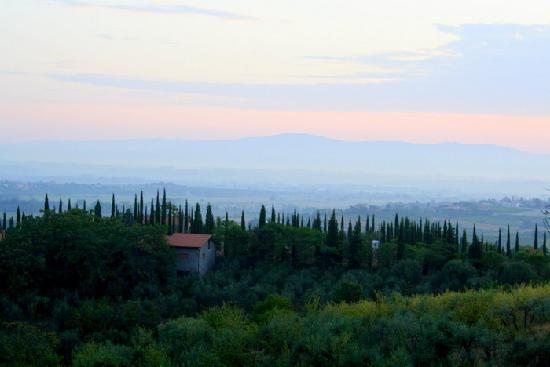Campeggio Belmondo Montepulciano: View over the HUGE farm