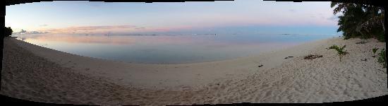 Makayla Palms: The beach outside Makayla in the early morning