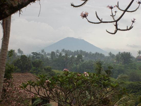 Taman Indrakila: View from my bungalow