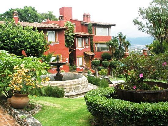 Villa San Jose Hotel & Suites: garden view
