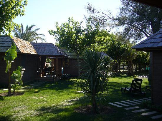 Playa Montroig Camping Resort: BUNGALOW PALM TREE VILLAS