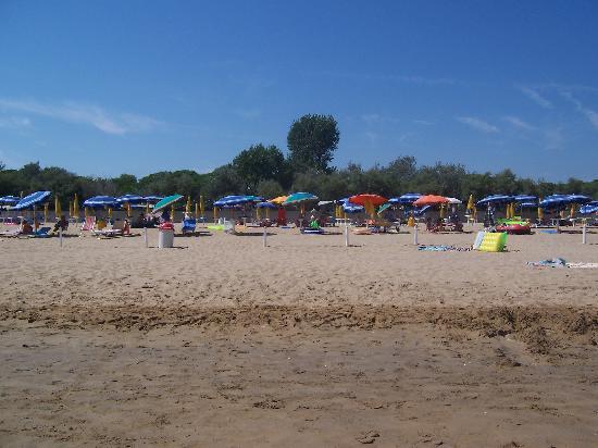 Camping Village Pino Mare: Strand