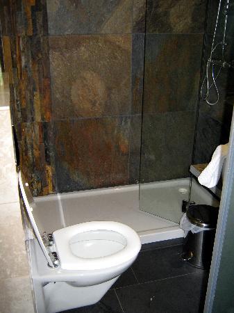 Alp Art Hotel : WC und Dusche