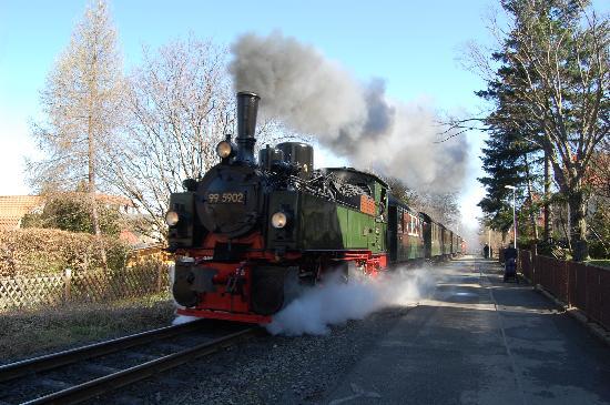 La Rustica Altstadthotel: steam train , street running in town