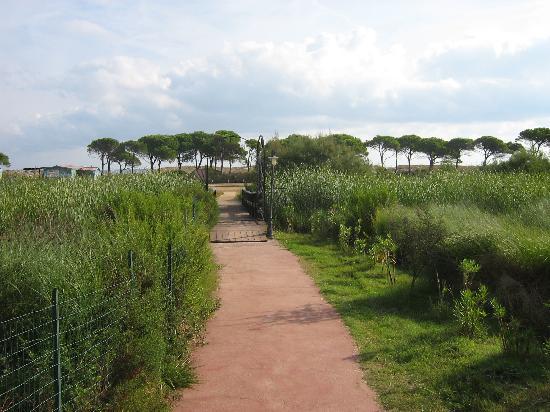 Villaggio Baia dei Pini: vialetto verso la spiaggia