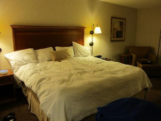 Hampton Inn Columbus Airport: King size bed (the bed was made neater than this, we sat down on it before the picture was taken