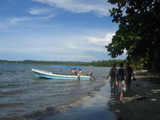 Beach-trip arranged by Casa de la Iguana