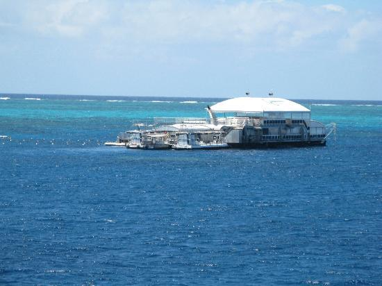 Glass Bottom Boat On Tour Picture Of Quicksilver Cruises
