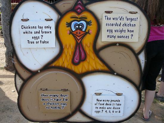 Educational Kids Signs at Milburn Orchards