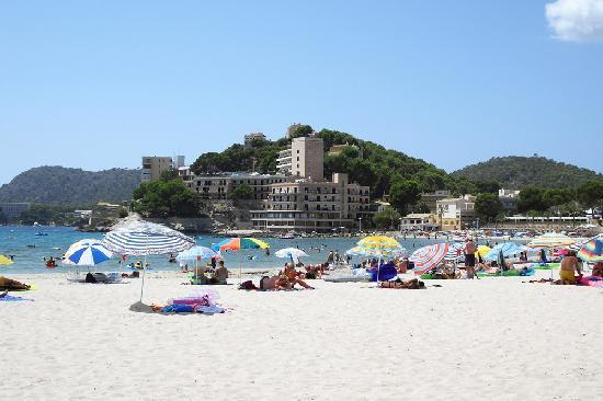 BQ Paguera Boutique Hotel: the closest beach