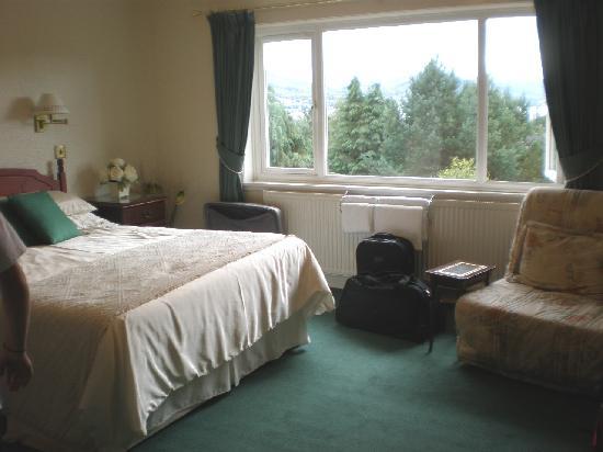Braeburn Guesthouse : Habitación