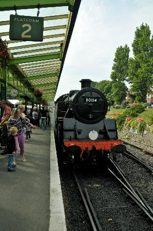 Swanage Railway: just arrived
