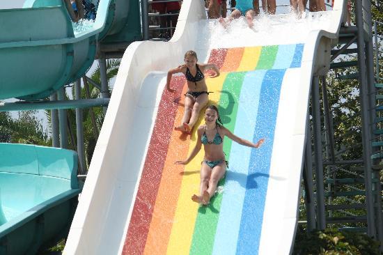 Euphoria Palm Beach Resort: Slide pool