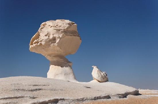 وايت دزرت: www.desert-safari-egypte.com