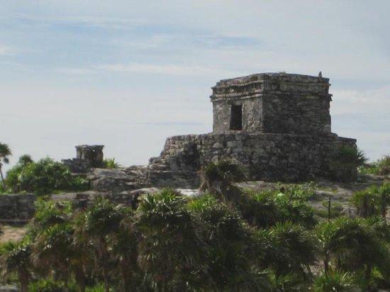 Edventure Tours : Talum Mayan Ruins