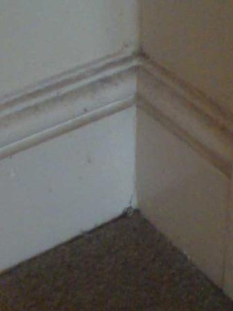 Gresham Hotel: dust