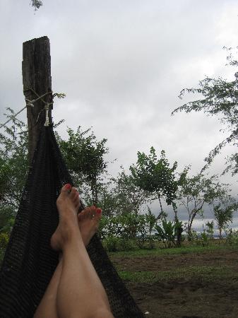 Hotel Hibiscus Garden : One of many hammocks
