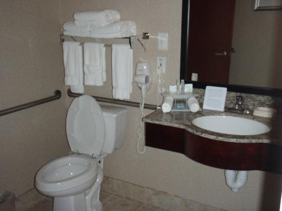 Holiday Inn Express College Station: Bathroom