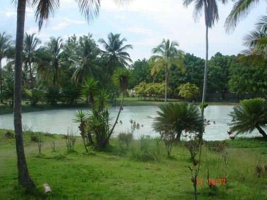 Las Aguas de Moises: piscina Eros