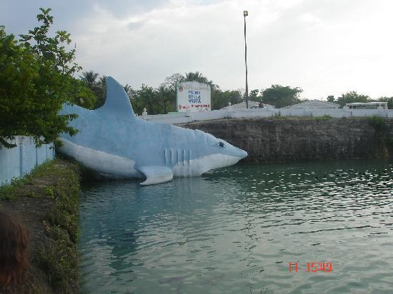 Las Aguas de Moises: un tobogán que da  a la piscina bella vista