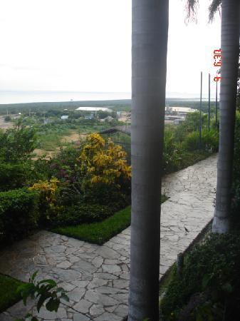 Hotel Eco Inn: jardines del hotel desde la habitación