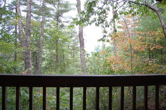 Lost Creek Cabins : another view from cabin 2