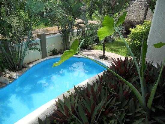 Hotel Villas Sayulita: Pool