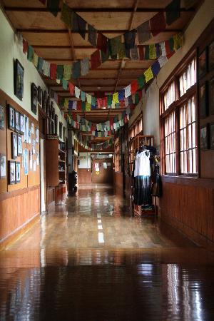 HOA Hokkaido Outdoor Adventures: 温かみのある木の廊下