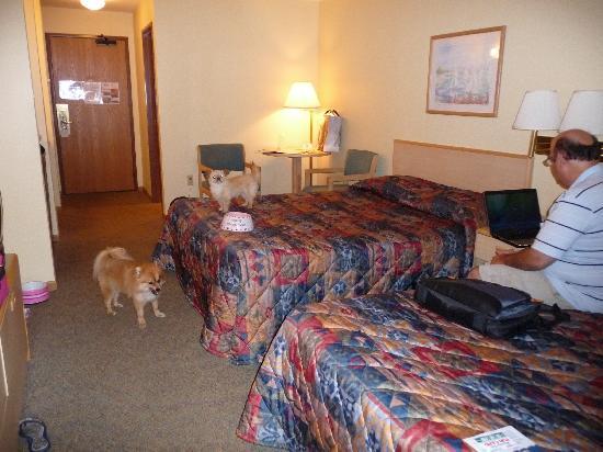 Inside The Room Picture Of Baker S Sunset Bay Resort