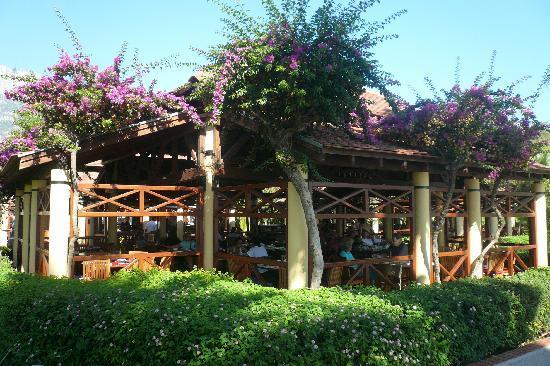 Club Med Palmiye: une des salles de restaurant du villagio