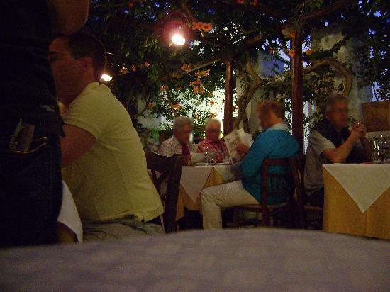 Avra Restaurant - Garden: Foto vom Garten des Restaurants