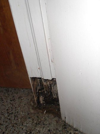 Shamrock Inn: Hole in door molding.