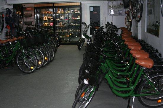 Green Bikes Barcelona : Green Fleet