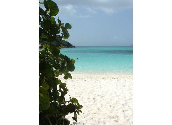 Windcrest Villa: Trunk Bay