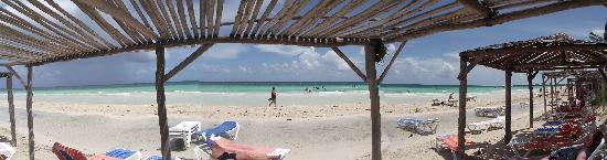 Tryp Cayo Coco: panoramic view of the beach at the Tryp