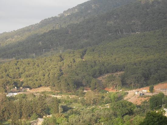 Tlemcen, Argelia: montagne ylemcen
