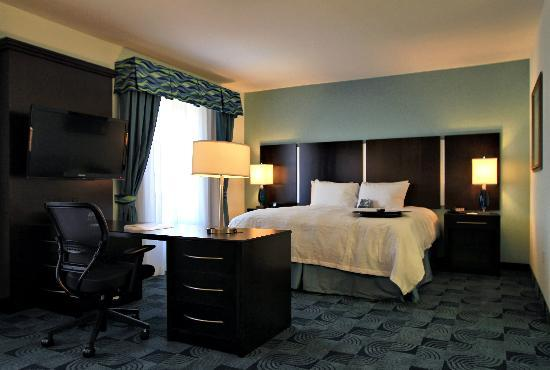 Hampton Inn & Suites Dallas / Lewisville - Vista Ridge Mall: Studio Suite