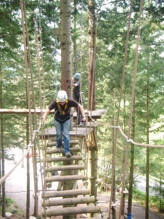 Zip World Fforest: Adventurer's Course