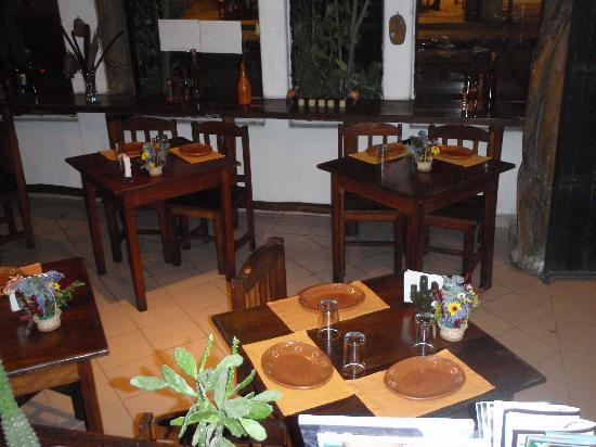 Cactus playa del carmen restaurant reviews phone