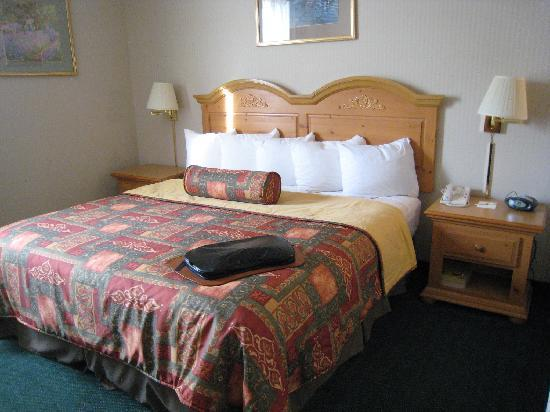 Best Western Plus Revere Inn & Suites: Bed