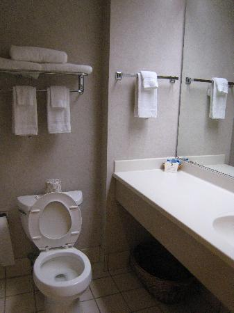 BEST WESTERN PLUS Revere Inn & Suites: Bathroom