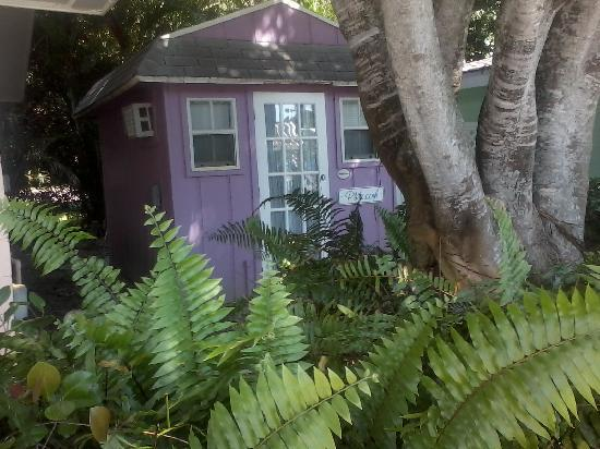 Waterside Inn on the Beach: The Plum (Shower Cottage)